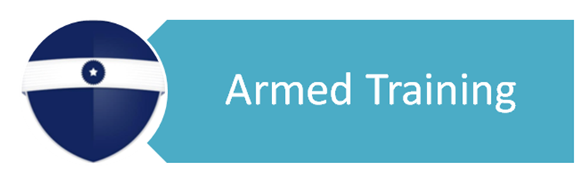 Free Professional Resume » armed security guard requirements ...